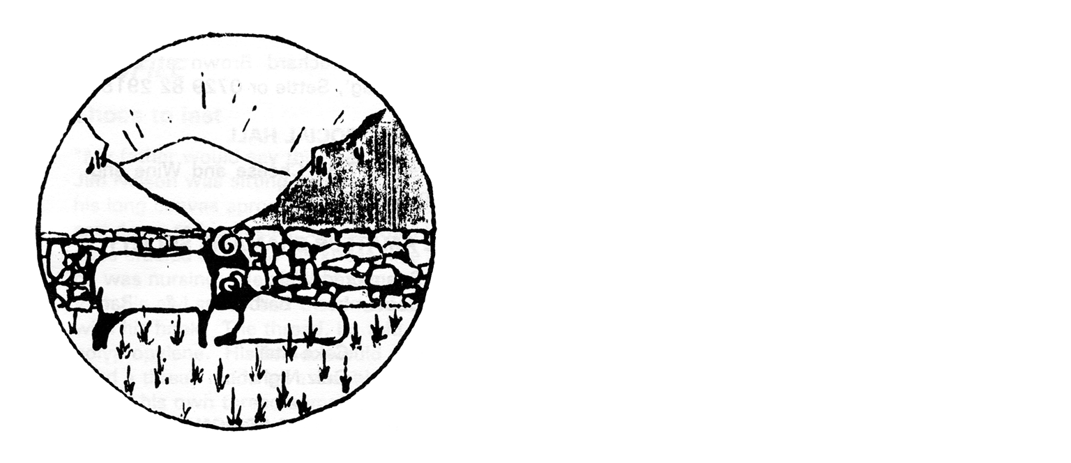 Settle News